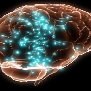 Atualização em Neuroaprendizagem